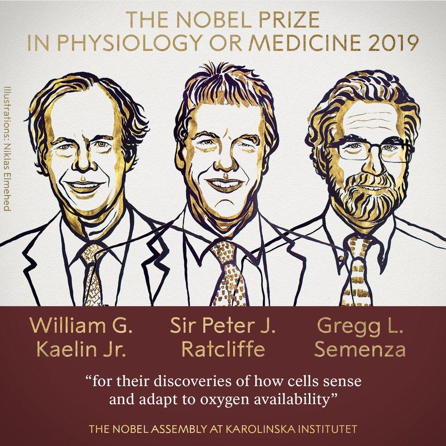 诺贝尔医学奖揭晓,人类克服癌症再进一步
