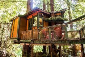 隐居山林,不问世事 | Redwood Treehouse Santa Cruz Mtns