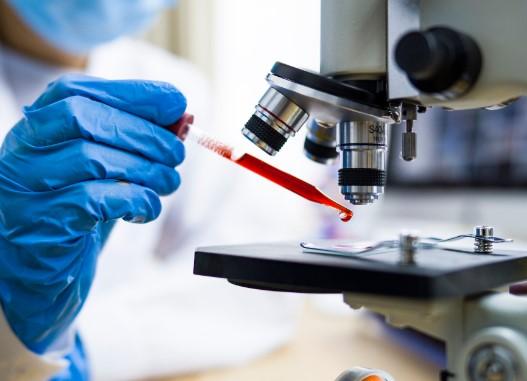 泰国新冠疫苗研究开始对猴子进行第二轮注射