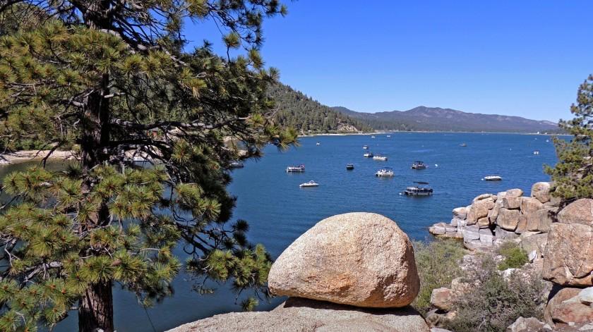水质控制委员会在大熊湖发现了有害藻类