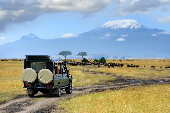 肯亚马赛马拉国家保护区59年来第一次遭遇连续4个月没有游客