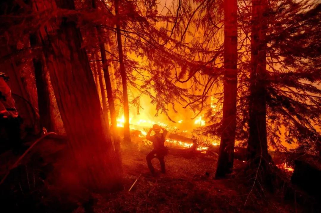 野火肆虐!加州5县进紧急状态,火势危及社区;华盛顿州小镇被烧毁;俄勒冈州发疏散令