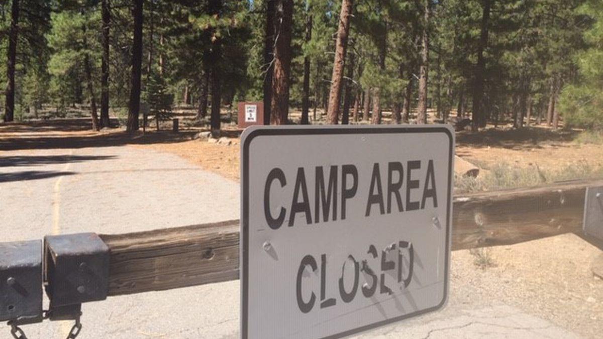 加州所有国家森林公园9日统一宣布关闭
