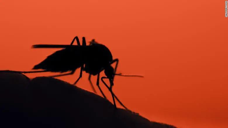 密歇根州现罕见的蚊媒疾病--东部马脑炎,官员督促人们待在室内