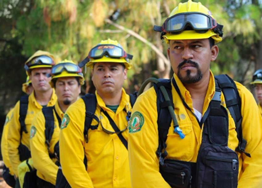 加拿大与墨西哥消防员陆续加入支援美国西部山火