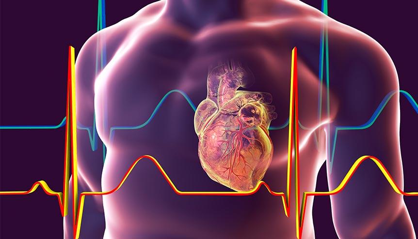 10/19美国疫情更新:新冠幸存者心脏或长期受损;佩洛西希望在大选前通过刺激经济方案;美加边境关闭延长至11月21日