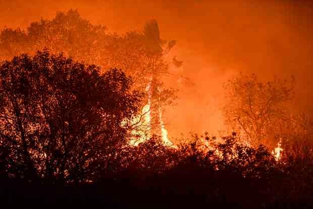 橙县丝薇拉都山火延烧超13,354亩,目前火势仅控制25%