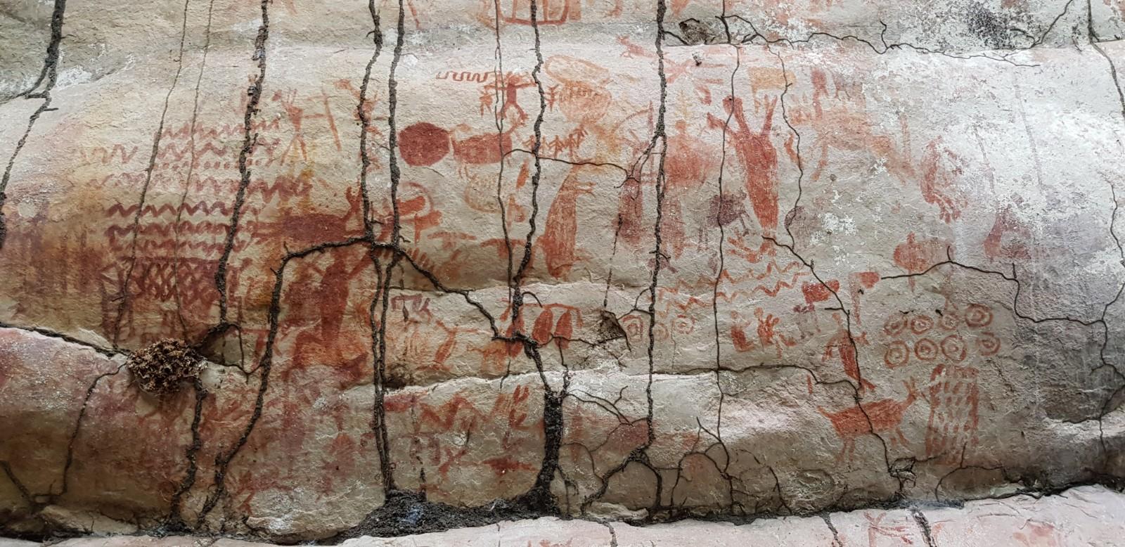 亚马逊雨林发现冰河时期消失文明的巨型岩石壁画