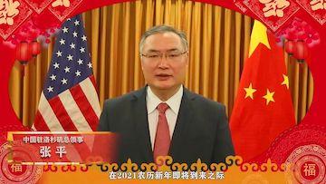 张平总领事向领区侨胞恭贺新春