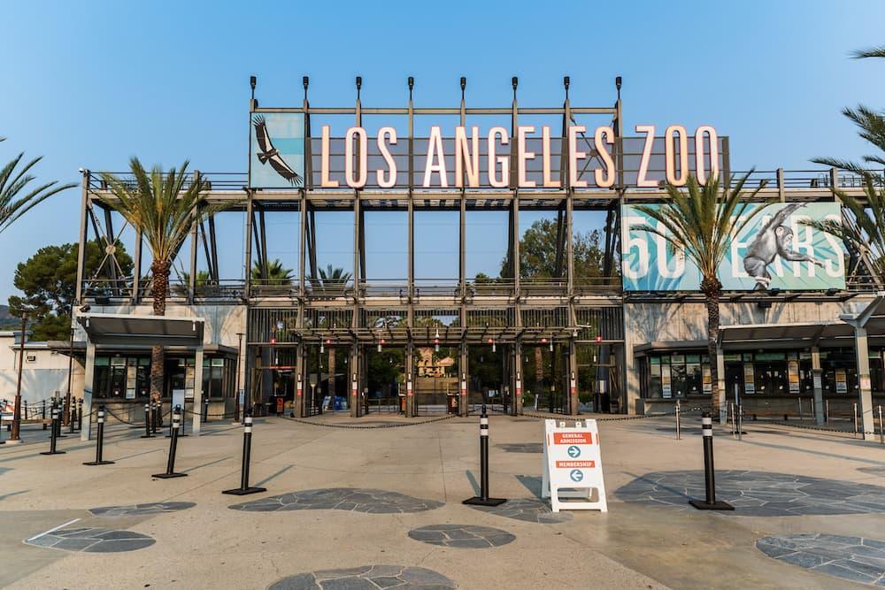洛杉矶动物园将于2月16日重新开放