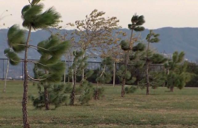国家气象局周三发布南加州强风预警