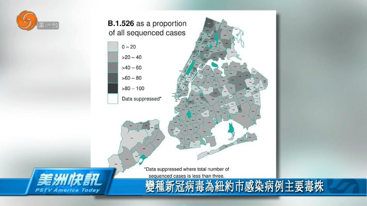 變種新冠病毒為紐約市感染病例主要毒株