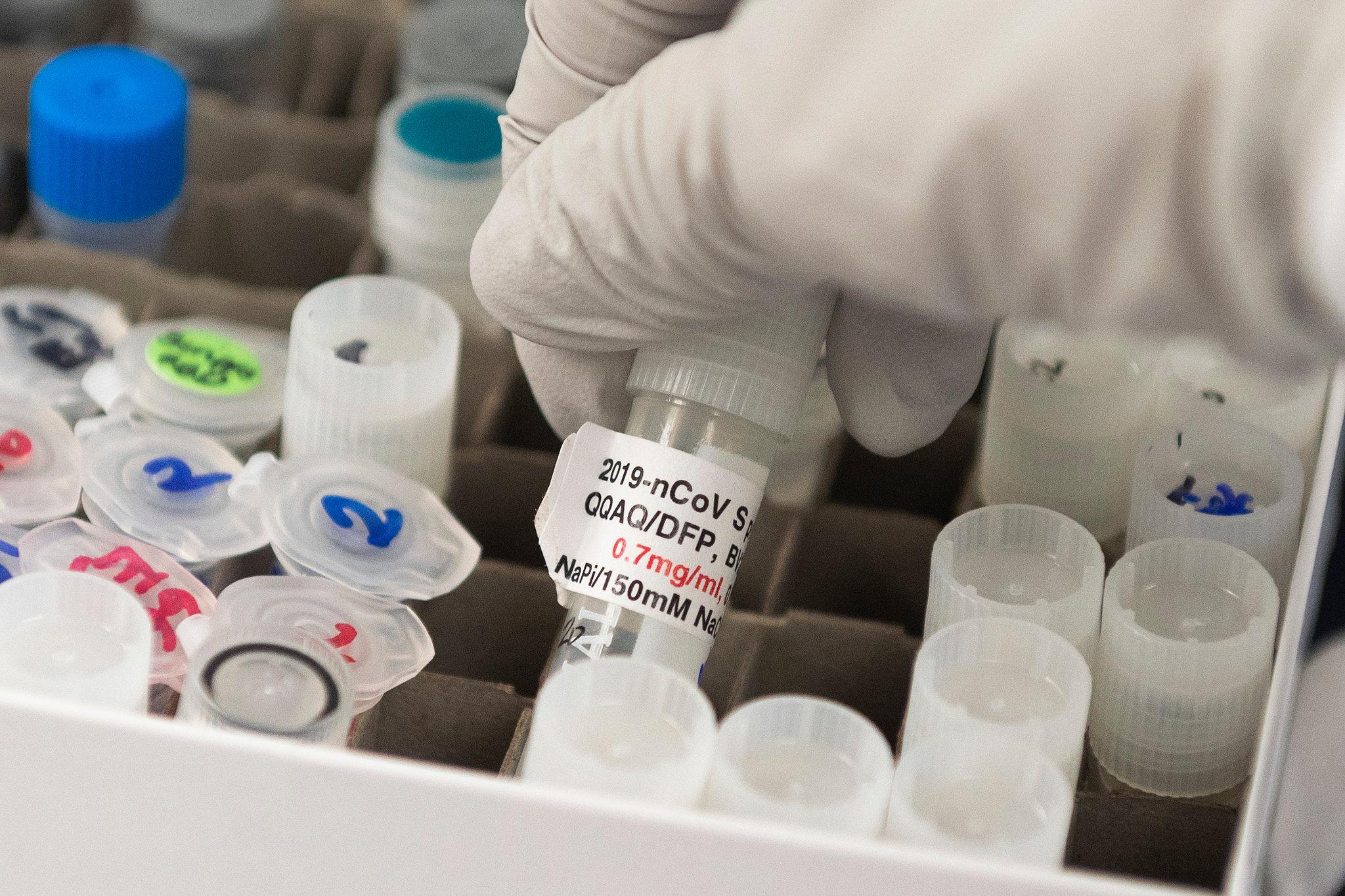 Novavax公司研究预防新冠和流感疫苗实验中产生积极结果