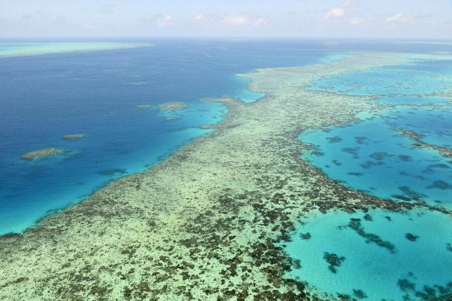 """澳洲大堡礁列入""""濒危""""世界遗产清单"""