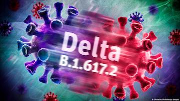 7/1美国疫情更新:随着Delta变种病毒的传播,美国新增确诊病例增加10%;专家敦促 FDA 全面授权辉瑞和莫德纳疫苗