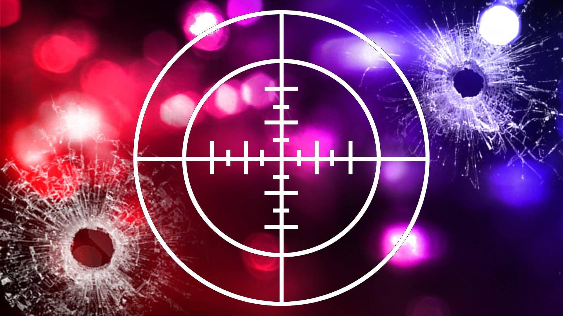 血腥独立日:全美发生500多起枪击案致233人死亡!