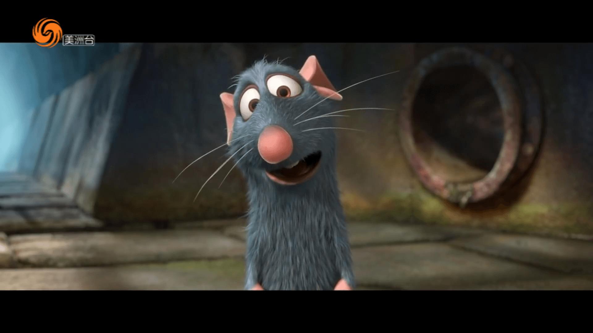 影視裏的鼠明星