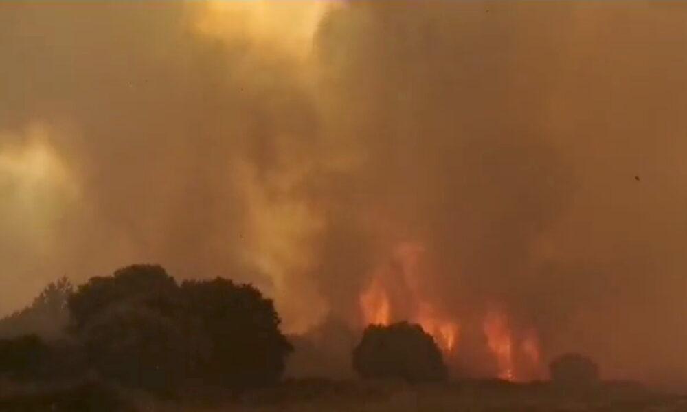 意大利萨丁尼亚岛发生大规模野火